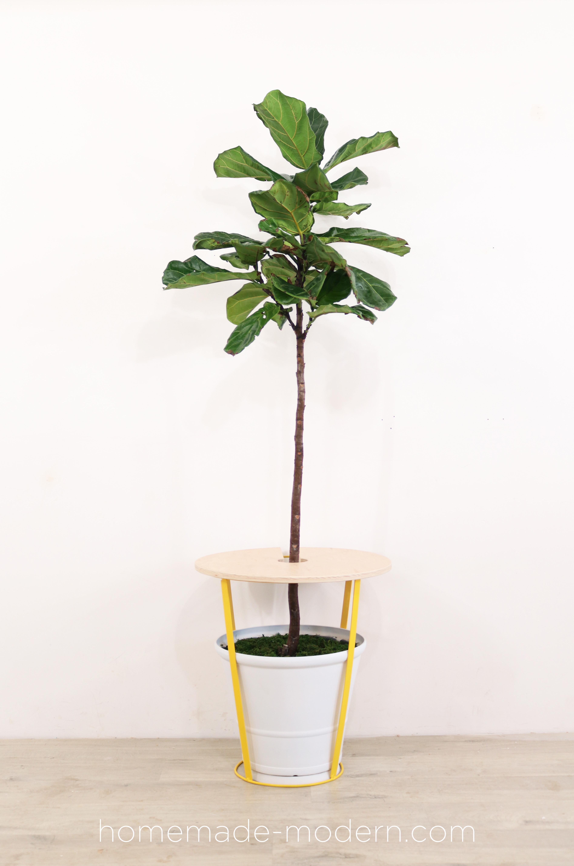 http://www.homemade-modern.com/wp-content/uploads/2019/05/plantersidetable-finalplantervertical.jpg